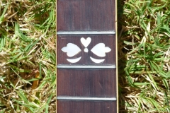 gibson_mastertone_banjo_pb-granada_neck_frets_c