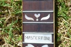 gibson_mastertone_banjo_pb-granada_neck_frets_d