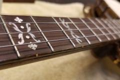 8109-1-fingerboard-inlays