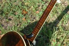 E3281-6_gibson_mastertone_banjo_pb-7_rb_tiger_stripes