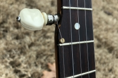 DG-5218_gibson_banjo_rb-00_fifth_fret