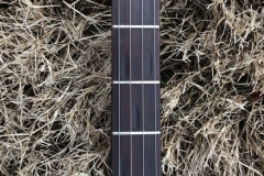 DG-5218_gibson_banjo_rb-00_lower_frets
