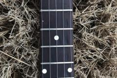 DG-5218_gibson_banjo_rb-00_upper_frets