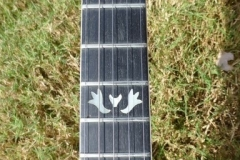 849887_gibson_mastertone_banjo_rb-800_middle_frets