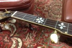 8690-1_gibson_mastertone_banjo_rb-granada_first_five_frets
