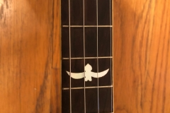 293-6_gibson_banjo_tb-1_middle_frets
