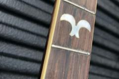 413-2_gibson_banjo_tb-1_fingerboard_b