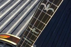 9543-29_gibson_banjo_tb-1_fleur_de_lis