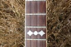 9489-72_gibson_mastertone_banjo_tb-3_middle_frets