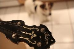 9903-41_gibson_mastertone_banjo_tb-3_peghead_dog