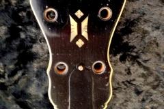 1392-2_gibson_mastertone_banjo_tb-7_peghead