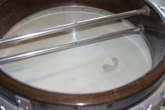 390-6_gibson_mastertone_banjo_tb-7_tone_ring