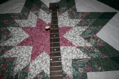 EW-2668_montgomery_ward_five-string_banjo_955_neck